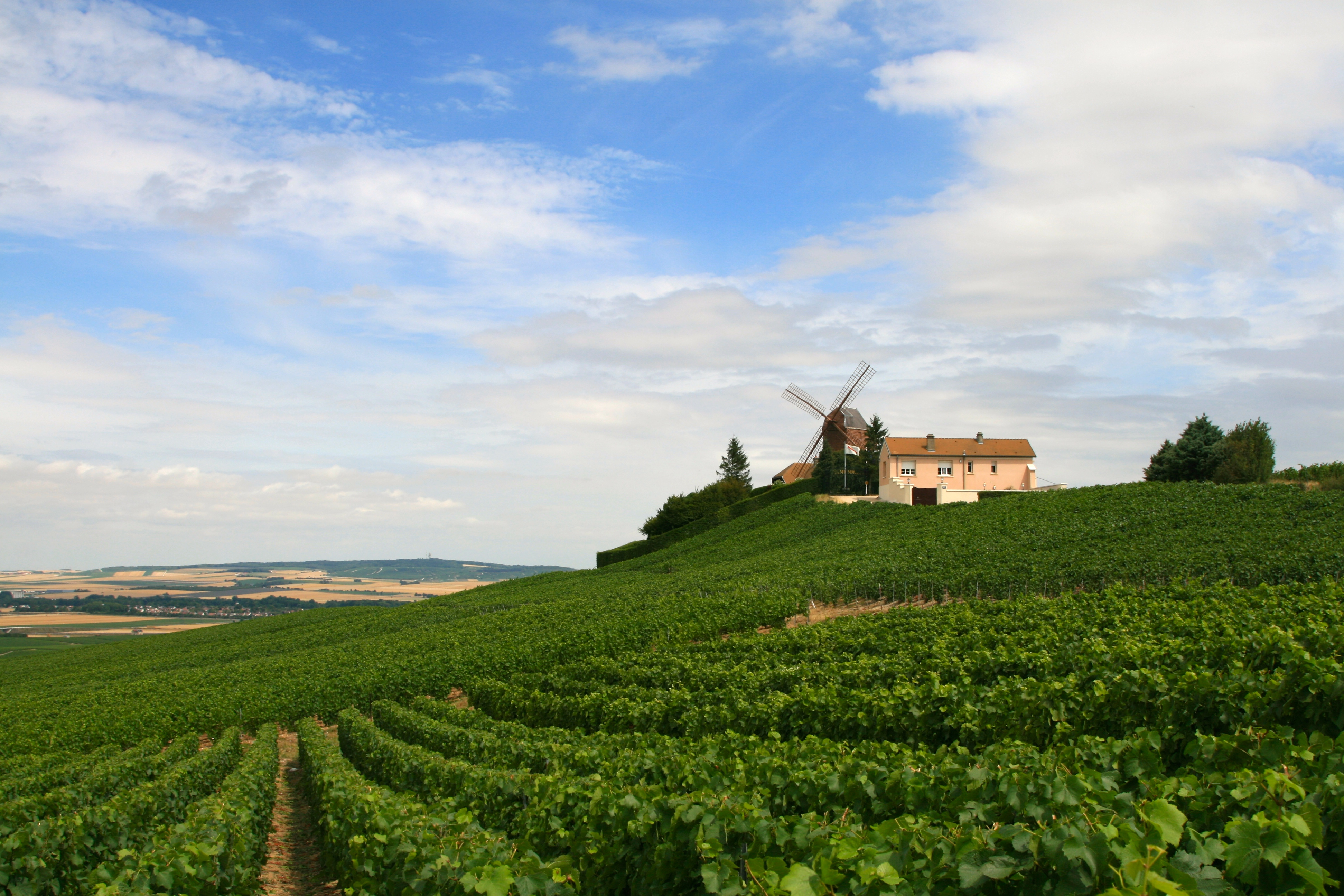 Discovering the beauty of champagne food and wine gazette for Champagne region in france